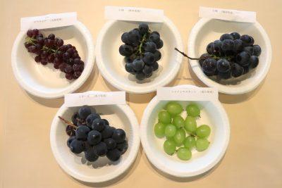 食から考える健康経営導入セミナー